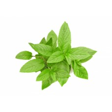 Peppermint - Aroma 10ml